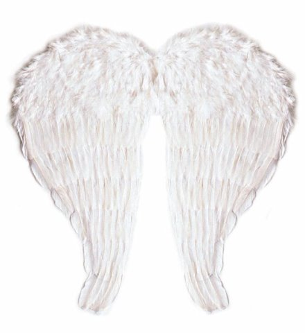 Alas Angel Plumas Disfraces Pichardo